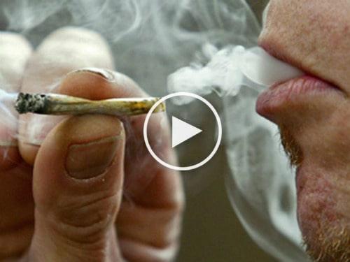 Что-будет-если-крутить-марихуану
